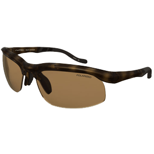 Switch Magnetic Tortoise Sunglasses