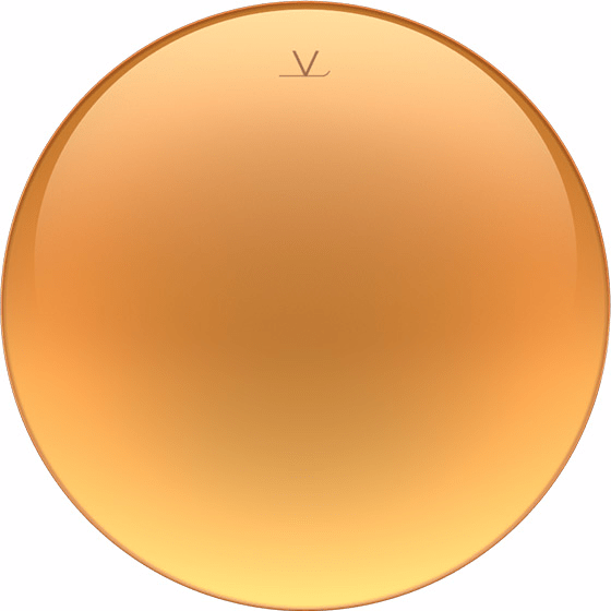 Vuarnet Pure Brown Gold Flash lenses